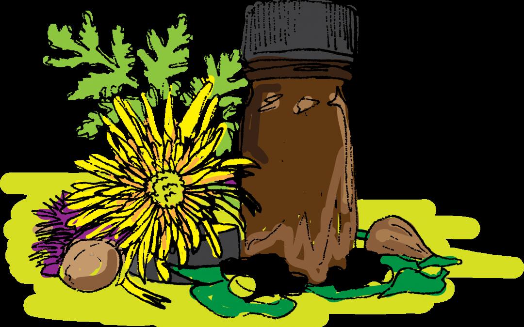 Homeopathy: healthy medicine